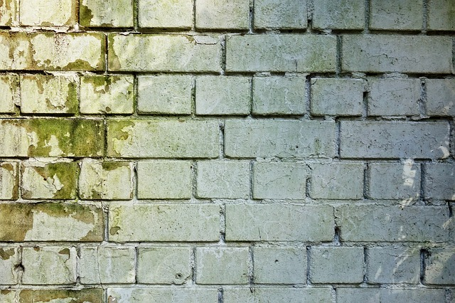 brick-wall-mold